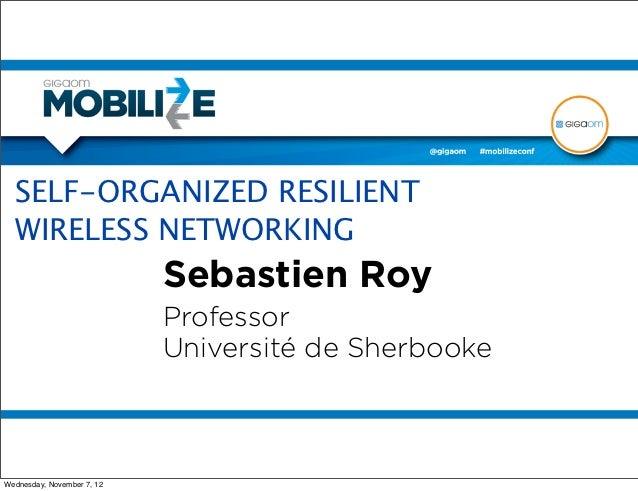 SELF-ORGANIZED RESILIENT  WIRELESS NETWORKING                            Sebastien Roy                            Professo...