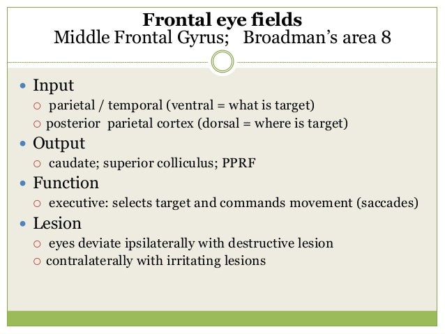  Voluntary eye movements are of two types.  Pursuit.  Saccades.  Bedside test:  1. Ask the patient to follow the move...