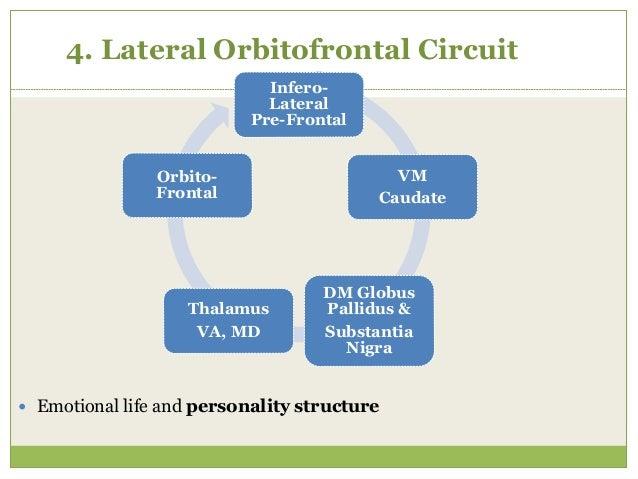 5. Anterior Cingulate Circuit  Abulia, akinetic mutism MD Thalamus Ant. Cingulate Ventral Striatum Globus Pallidus & Subs...