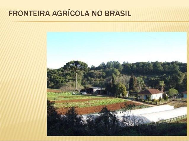 A questão da Fronteira Agrícola no Brasil esbarra na questão ambiental, mas também revela uma problemática social no mei...