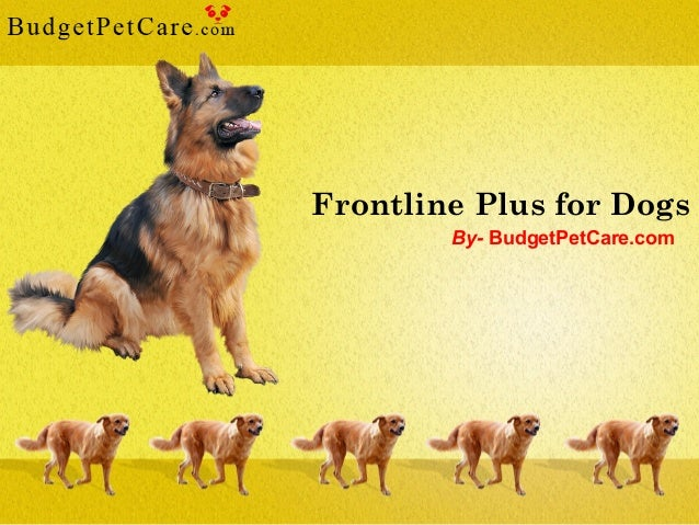 Frontline Plus for Dogs By- BudgetPetCare.com