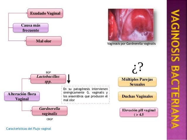 cultivo de exudado uretral pdf