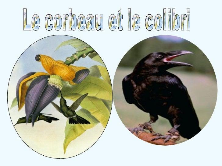 Le corbeau et le colibri