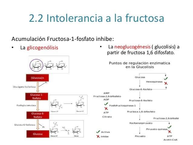 Fructosuria esencial e intolerancia a la fructosa