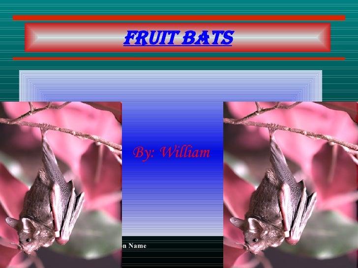 By: William Fruit bats