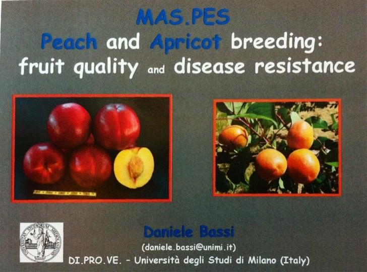 FruitBreedomics 1st Stakeholder Day meeting 20120207 Universiyt of milano