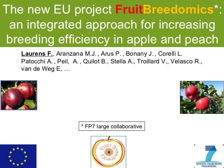 The new EU project  Fruit Breedomics *: an integrated approach for increasing breeding efficiency in apple and peach Laure...