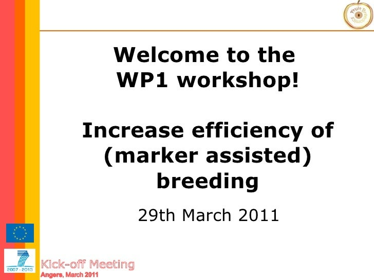 Welcome to the  WP1 workshop! Increase efficiency of (marker assisted) breeding 29th March 2011