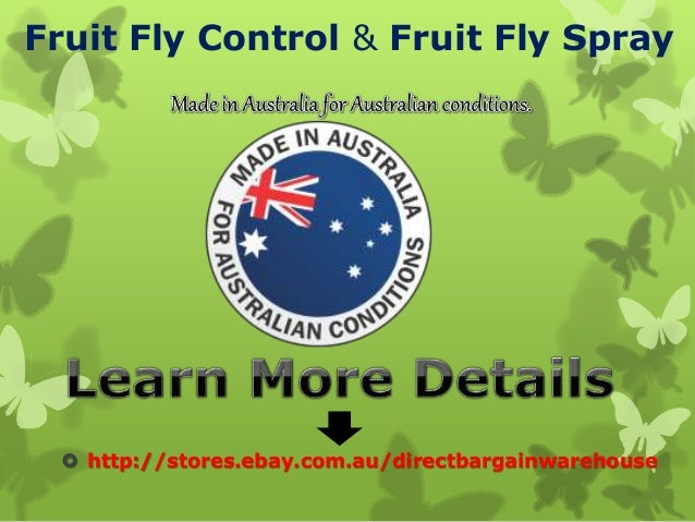 Best Fruit fly control