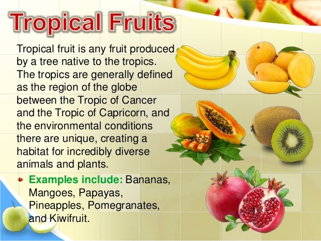 fruits that are healthy definition of a fruit