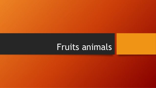 Fruits animals