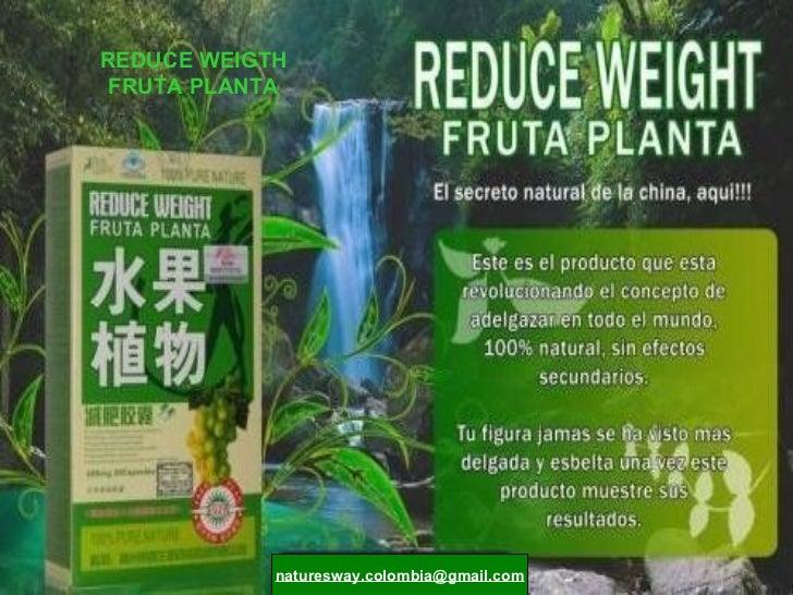 REDUCE WEIGTH FRUTA PLANTA [email_address]