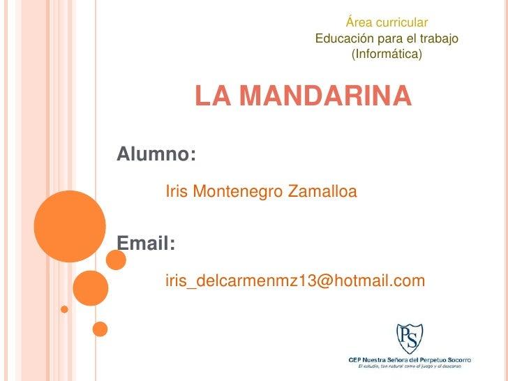 Área curricular                       Educación para el trabajo                            (Informática)            LA MAN...