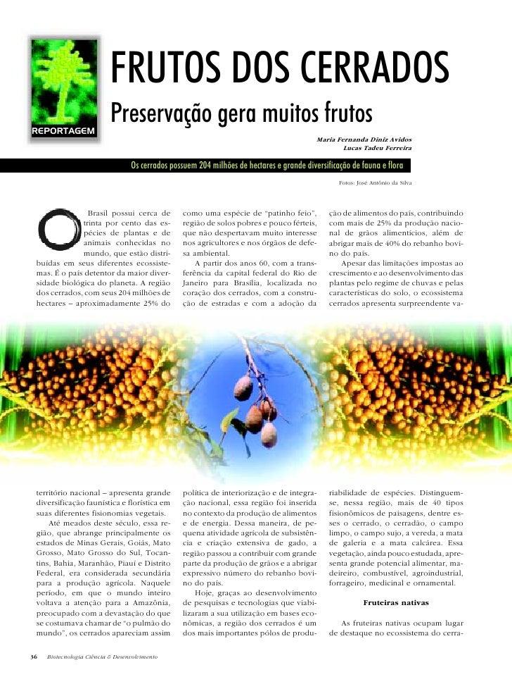 FRUTOS DOS CERRADOS REPORTAGEM                            Preservação gera muitos frutos                                  ...