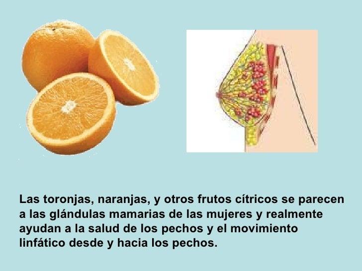 Las toronjas, naranjas, y otrosfrutos cítricos se parecen a las glándulas mamarias de las mujeres y realmente ayudan a la...