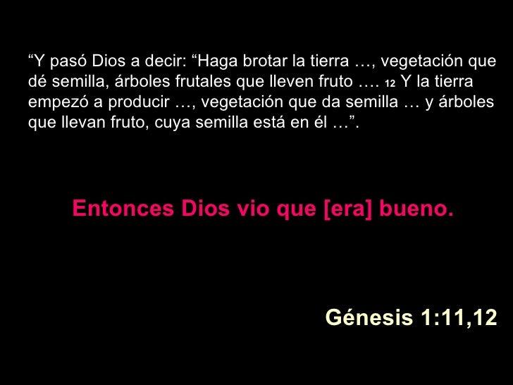 """"""" Y pasó Dios a decir: """"Haga brotar la tierra …, vegetación que dé semilla, árboles frutales que lleven fruto ….  12 Y la..."""