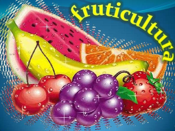 """¿Qué es fruticultura? Es """"la actividad planificada y sistemática realizada por  el ser humano, que abarca todas las accio..."""