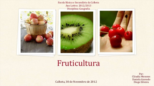 Escola Básica e Secundária da Calheta Ano Letivo: 2012/2013 Disciplina: Geografia  Fruticultura Calheta, 30 de Novembro de...