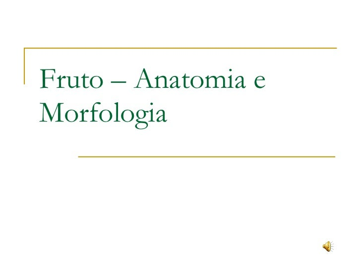 Fruto – Anatomia e Morfologia