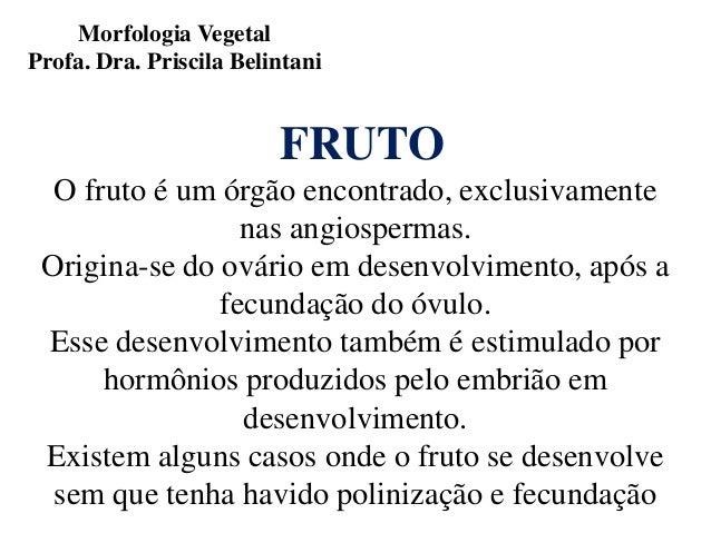 Morfologia Vegetal Profa. Dra. Priscila Belintani  FRUTO O fruto é um órgão encontrado, exclusivamente nas angiospermas. O...