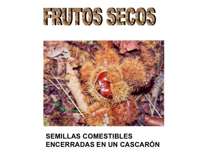 FRUTOS SECOS SEMILLAS COMESTIBLES  ENCERRADAS EN UN CASCARÓN