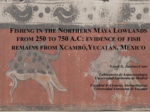 FISHING IN THE NORTHERN MAYA LOWLANDS FROM 250 TO 750 A.C: EVIDENCE OF FISH REMAINS FROM XCAMBÓ,YUCATÁN, MÉXICO Nayeli G. ...