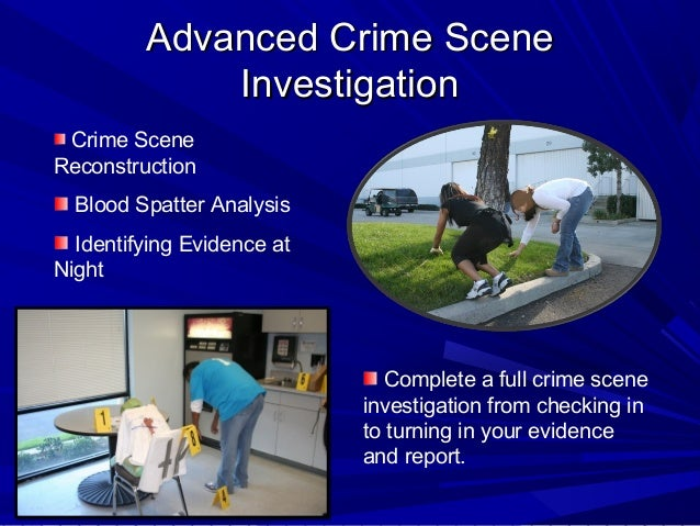 module seven forensic science Module 7: investigating money laundering and terrorist   module 7 will also discuss investigations of terror-  326 forensic science 26.