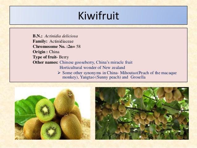 Kiwifruit Production In India