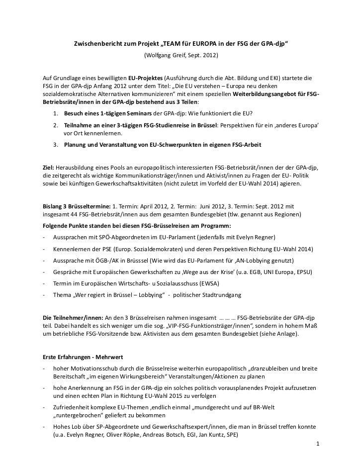 """Zwischenbericht zum Projekt """"TEAM für EUROPA in der FSG der GPA-djp""""                                      (Wolfgang Greif,..."""