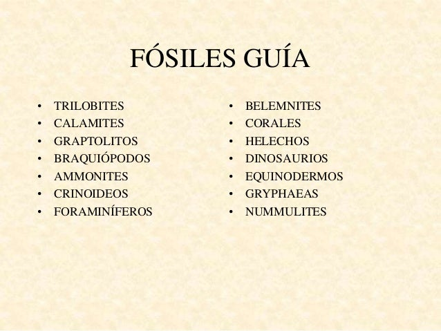 FÓSILES GUÍA • TRILOBITES • CALAMITES • GRAPTOLITOS • BRAQUIÓPODOS • AMMONITES • CRINOIDEOS • FORAMINÍFEROS • BELEMNITES •...