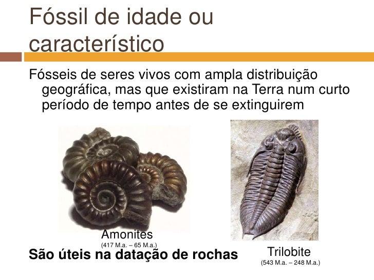 Fóssil de idade ou característico<br />Fósseis de seres vivos com ampla distribuição geográfica, mas que existiram na Terr...