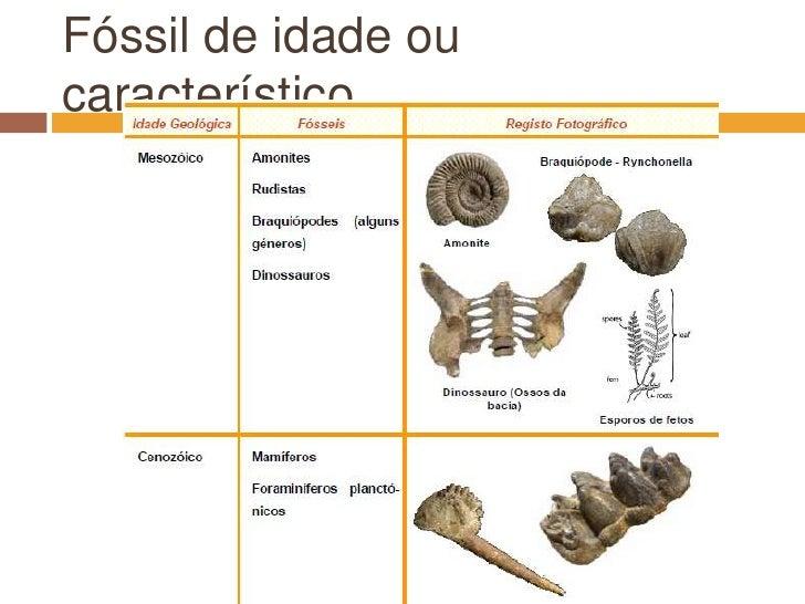 Fóssil de idade ou característico<br />
