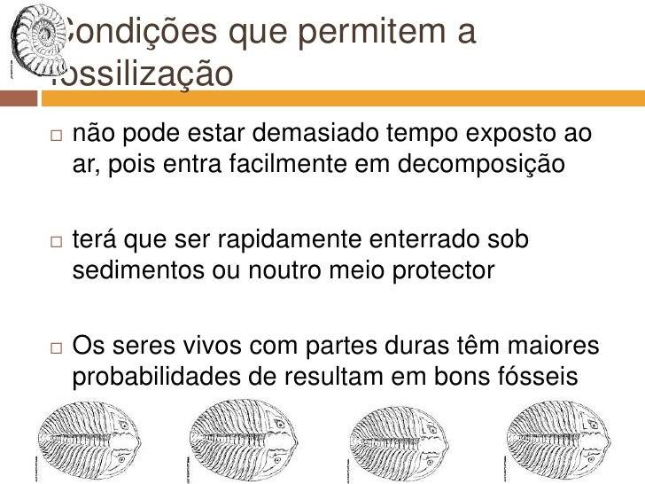 Condições que permitem a fossilização<br />não pode estar demasiado tempo exposto ao ar, pois entra facilmente em decompos...