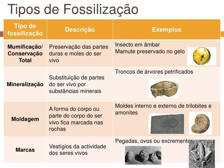 Tipos de Fossilização<br />