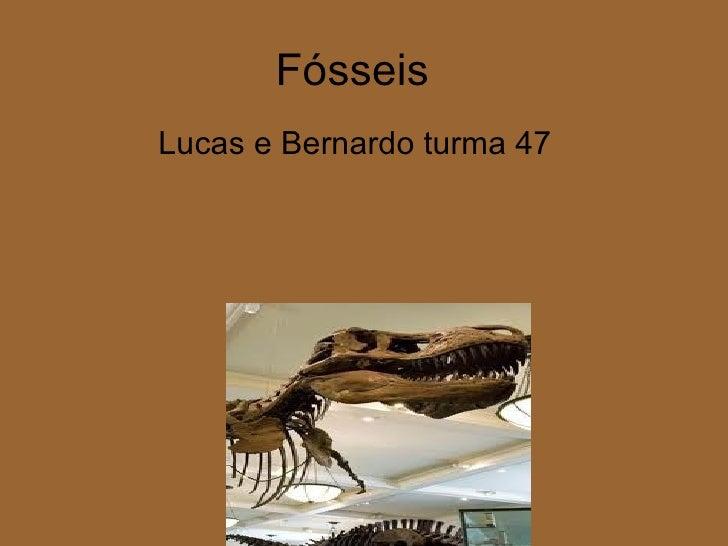 FósseisLucas e Bernardo turma 47