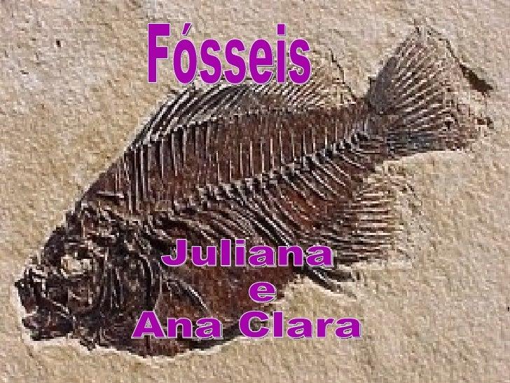 Fósseis são restos ou vestígios de animais e vegetais preservados em rochas.Restos são partes do animal ou planta e vestíg...