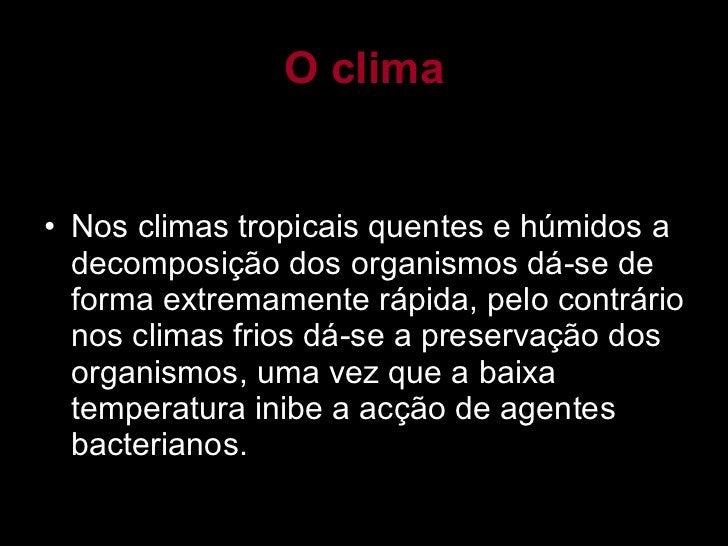 O clima <ul><li>Nos climas tropicais quentes e húmidos a decomposição dos organismos dá-se de forma extremamente rápida, p...