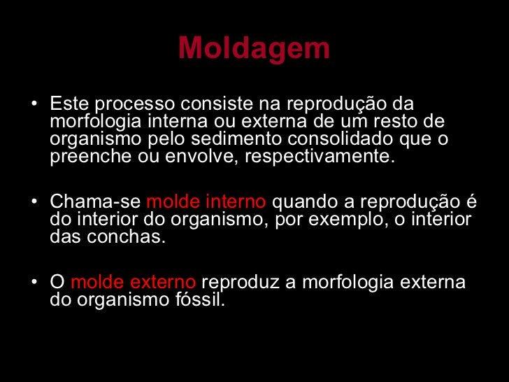 Moldagem <ul><li>Este processo consiste na reprodução da morfologia interna ou externa de um resto de organismo pelo sedim...
