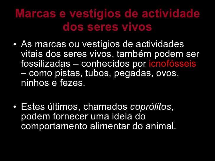 Marcas e vestígios de actividade dos seres vivos <ul><li>As marcas ou vestígios de actividades vitais dos seres vivos, tam...