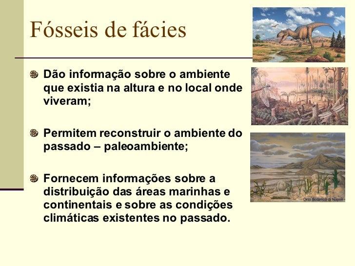 Fósseis de fácies <ul><li>Dão informação sobre o ambiente que existia na altura e no local onde viveram; </li></ul><ul><li...
