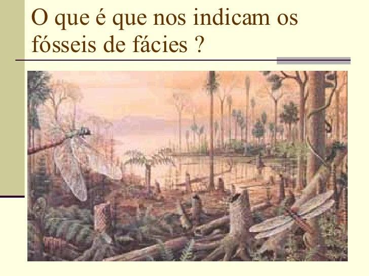 O que é que nos indicam os fósseis de fácies ?