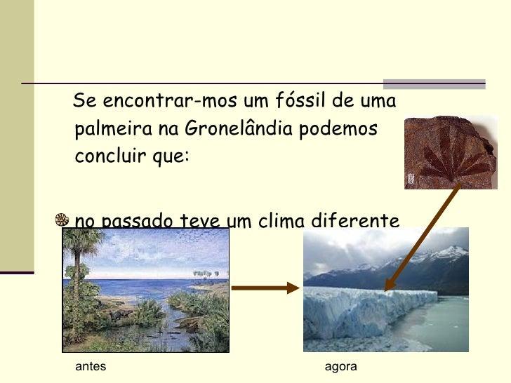 <ul><li>Se encontrar-mos um fóssil de uma palmeira na Gronelândia podemos concluir que: </li></ul><ul><li>no passado teve ...