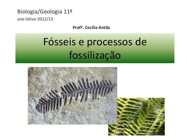 Fósseis e processos de fossilização Biologia/Geologia 11º ano letivo 2012/13 Profª. Cecília Antão