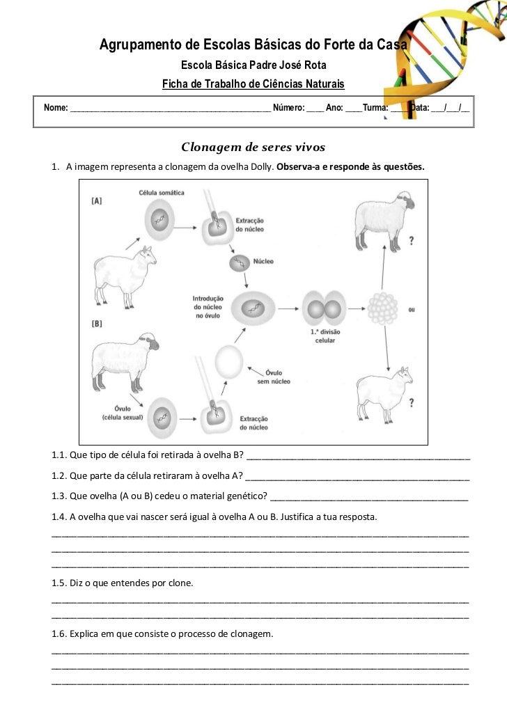 Agrupamento de Escolas Básicas do Forte da Casa                                 Escola Básica Padre José Rota             ...