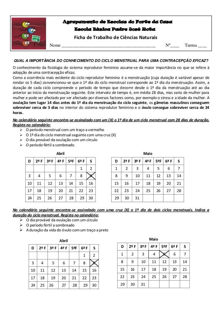 Agrupamento de Escolas do Forte da Casa                                                      Escola Básica Padre José Rota...