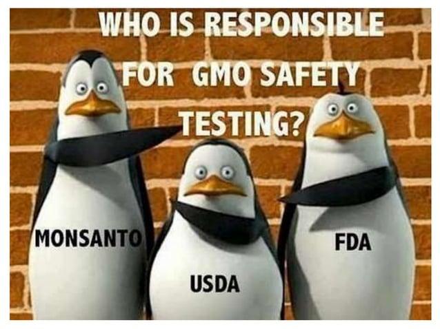"'GMO 특허권'집착하는 미국 정부 특허권 소멸 시한과 반대 여론 불구, ""특허권 포기 의사 없다"" USDA·FDA, GMO 교역확대 주력, 생명공학특허 다수 보유 GM patents owned by the US gov..."