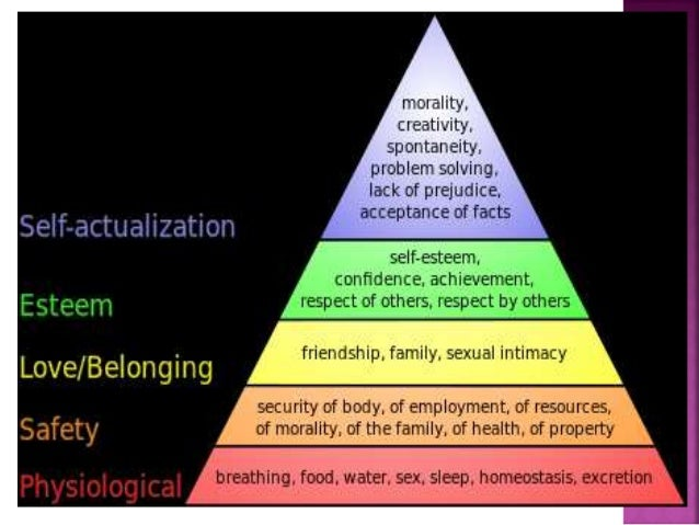 abraham maslows motivation and personality theory Maslow – holistic dynamic theory motivation is usually complex maslow believed that scientists should care about the people and topics.