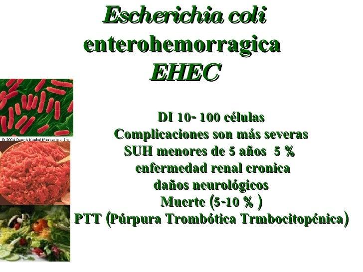 Escherichia coli  enterohemorragica EHEC DI 10- 100 células Complicaciones son más severas SUH menores de 5 años  5 % enfe...
