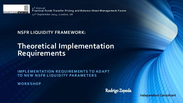 Basel III NSFR Liquidity Framework: Theoretical Implementation Requir…