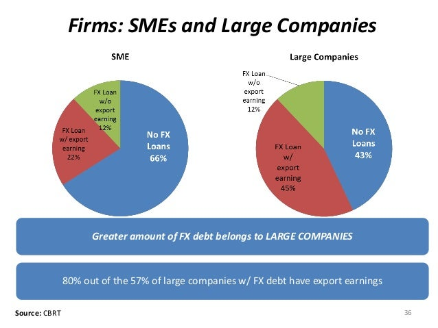 Firms: SMEs and Large Companies Greater amount of FX debt belongs to LARGE COMPANIES 80% out of the 57% of large companies...